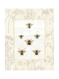 Bee Botanical Premium Giclee Print by Sue Schlabach