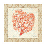 Coral Beauty Light III Premium Giclee Print by Emily Adams