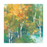 Confetti I Premium Giclee Print by Julia Purinton