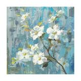 Graceful Magnolia II Premium Giclee Print by Danhui Nai