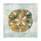 Coastal Beauty III Premium Giclee Print by Sarah Mousseau