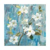 Graceful Magnolia I Premium Giclee Print by Danhui Nai