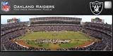 Oakland Raiders 1000 Piece Panoramic Stadium Jigsaw Puzzle Jigsaw Puzzle