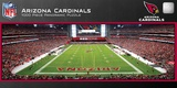 Arizona Cardinals 1000 Piece Panoramic Stadium Jigsaw Puzzle Jigsaw Puzzle