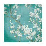 White Cherry Blossoms II on Blue Aged No Bird Premium Giclee Print by Danhui Nai