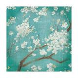 White Cherry Blossoms I on Blue Aged No Bird Premium Giclee Print by Danhui Nai
