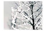 White Lights Prints by Taylor Greene