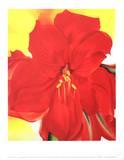 Amaryllis rouge Affiches par Georgia O'Keeffe