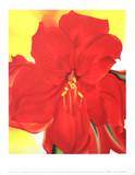 Red Amaryllis Reprodukcje autor Georgia O'Keeffe