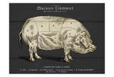 Coupe Du Porc Poster von Tina Carlson