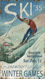 Winter Games: Ski Vintage Wood Sign Wood Sign