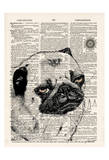 Pug Dictionary Poster by Tina Carlson