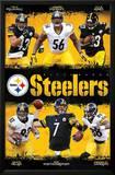 Pittsburgh Steelers Team Print