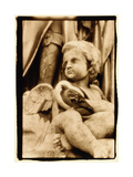 Putti and Pigeon, Opera House, Paris Photographic Print by Theo Westenberger