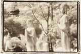 Standing Buddhas, Agutthaya, Thailand Photographic Print by Theo Westenberger