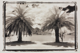 Two Palms, Guatemala Photographic Print by Theo Westenberger