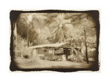 Caravan under awning, Queensland, Australia Photographic Print by Theo Westenberger