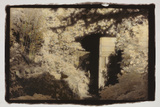Door in the Woods Fotodruck von Theo Westenberger