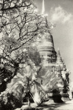 Temple View 1, Agutthaya, Thailand Photographic Print by Theo Westenberger