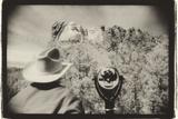 Regarding Mt. Rushmore, South Dakota, USA Photographic Print by Theo Westenberger