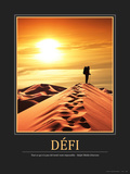 Défi (French Translation) Photographic Print