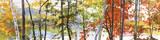 Autumn Lake II Affiches par Elissa Gore