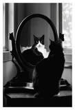 Reflejo Lámina por Tom Artin