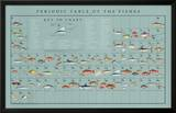 Periodic Table of the Fishes Educational Food Poster Posters by Naomi Weissman