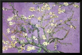 Purple Almond Blossoms Poster by Van Gogh Vincent