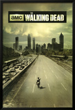The Walking Dead Season 1 TV Poster Póster