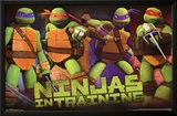 Teenage Mutant Ninja Turtles - Profile Cartoon Poster Posters