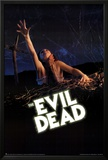 The Evil Dead Movie Poster Photo