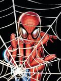 Amazing Spider-Man Family No.1 Cover: Spider-Man Photo by Adi Granov