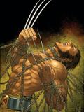 Uncanny X-Men No.499 Cover: Wolverine Prints by Mike Choi