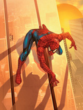 Spider-Man Unlimited No.12 Cover: Spider-Man Photo by Larroca Salvador