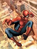 The Amazing Spider-Man No.549 Cover: Spider-Man Prints by Larroca Salvador