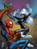 Marvel Adventures Spider-Man No.22 Cover: Spider-Man, Black Cat, and Mandarin Poster by Choi Mike