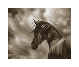 The Renegade Giclee Print by Barry Hart