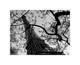 Eiffel III Giclée-tryk af Tom Artin