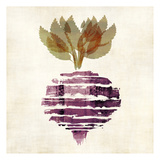 Beet 3 Prints by Kristin Emery