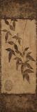 Vert Leaves Choc Brown Left 1 Prints by Kristin Emery