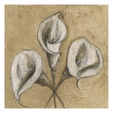 Cala Lily Soft 2 Posters by Kristin Emery