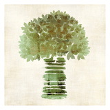 Broccoli Posters by Kristin Emery