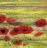 Red Poppies I Posters by Irena Orlov