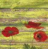 Red Poppies II Prints by Irena Orlov