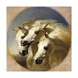 Pharaoh's Horses Giclee Print by Sr, John Frederick Herring