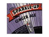 Sparkle-Up Ginger Ale Label Giclee Print