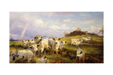 Wild Cattle of Chartley, Chartley Castle Beyond Giclee Print by Henry William Banks Davis