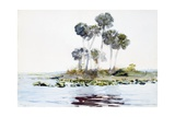 St. Johns River, Florida Giclee Print by Winslow Homer