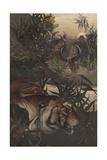 Shere Khan in the Jungle Giclee Print by Edward Julius Detmold